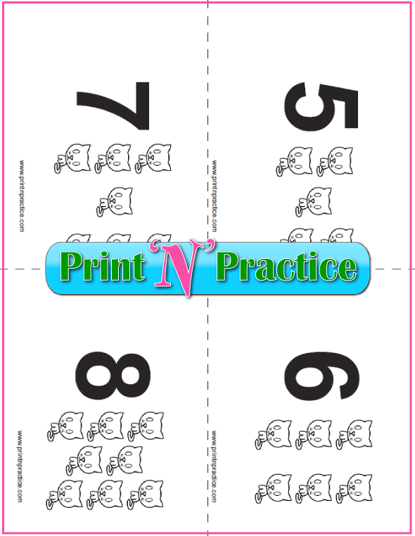 Kitten Counting Flash Cards 5-8